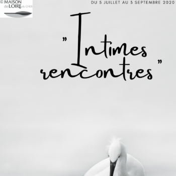 """Exposition """"Intimes rencontres"""""""