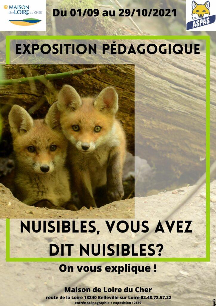 Exposition « Nuisibles », … vous avez dit « nuisibles » avec L'Aspas et la Maison de Loire du Cher