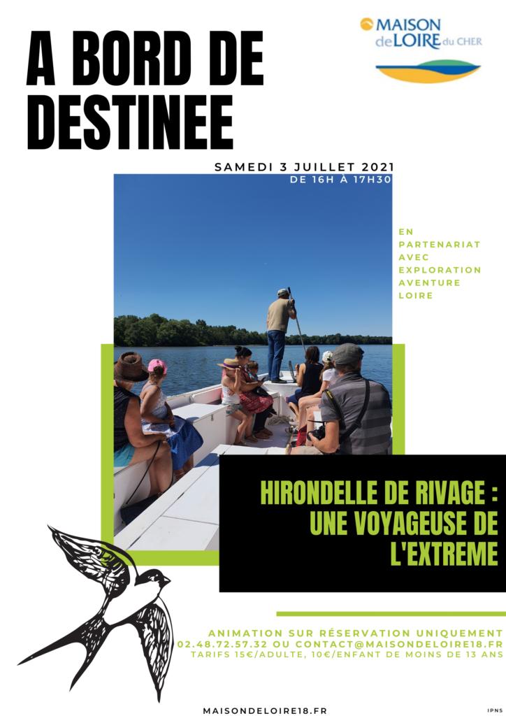 A bord de Destinée : Hirondelle de rivage – une voyageuse de l'extrême