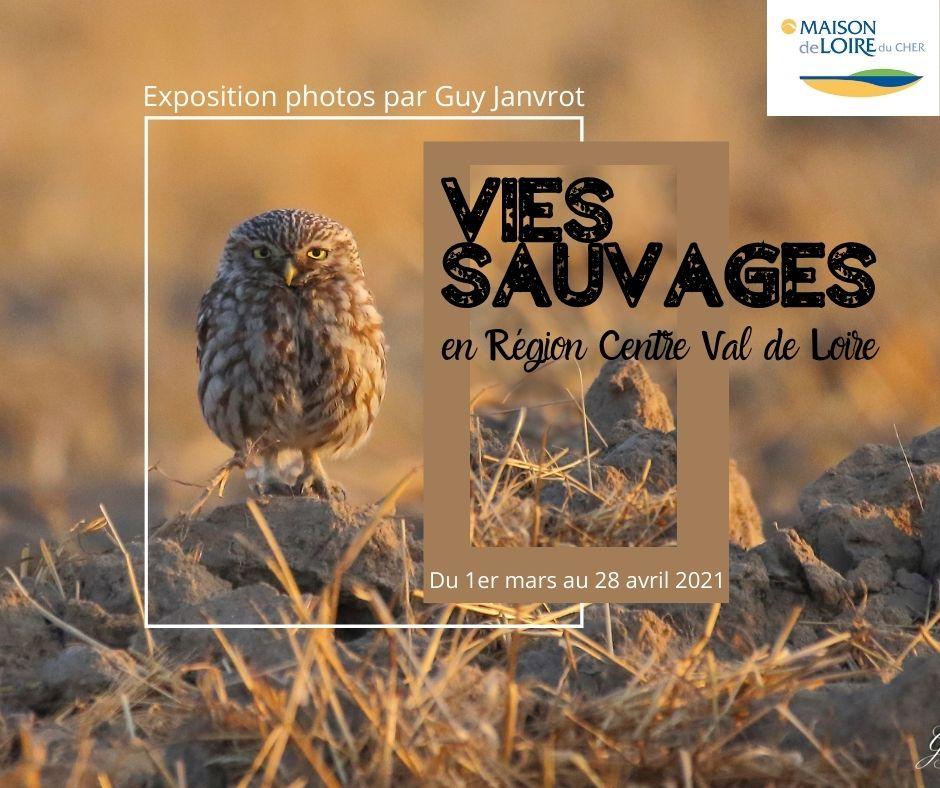 """Exposition photos """"Vies sauvages en région Centre Val de Loire"""" par Guy Janvrot"""