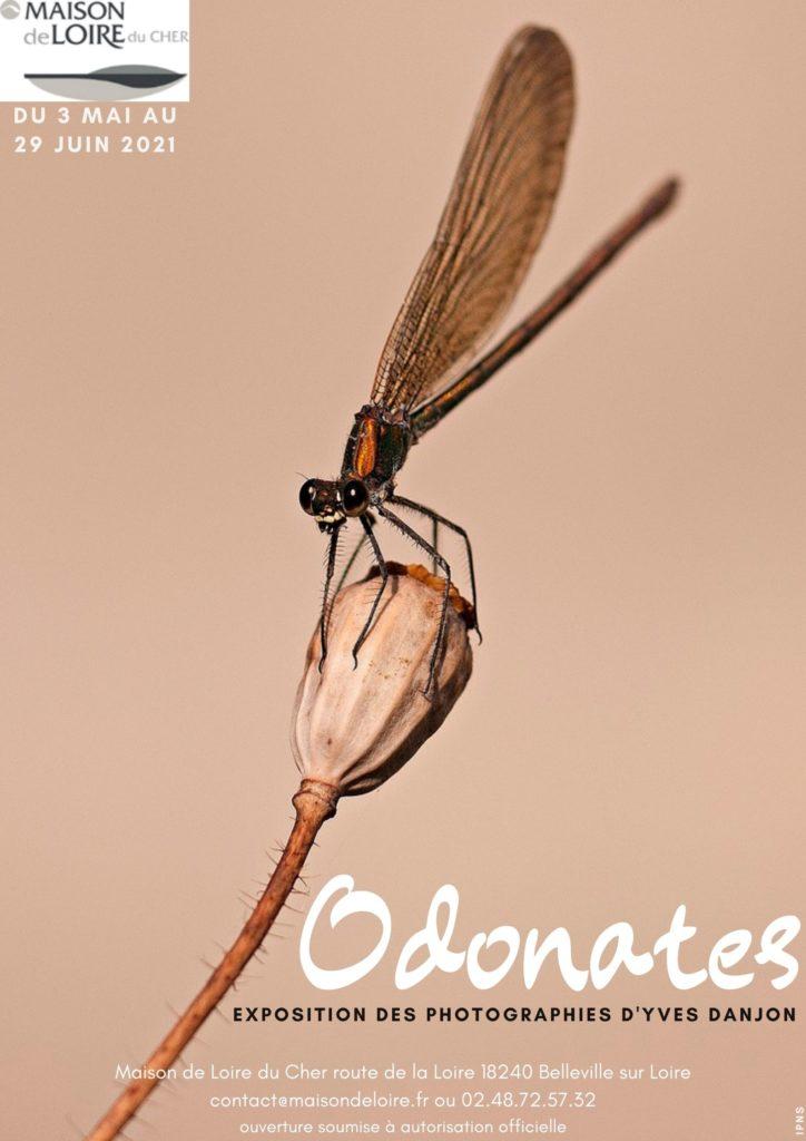"""Exposition photos """"Odonates"""" par Yves Danjon"""