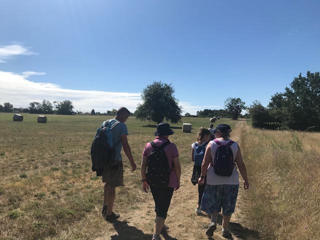 La découverte de la Faune de Neuvy sur Loire